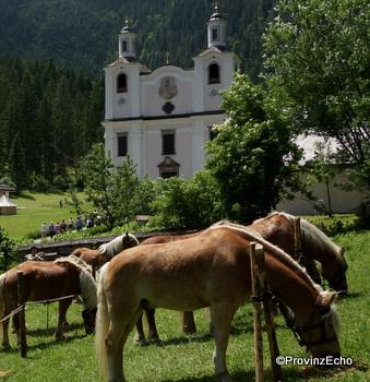 Pferdewallfahrt